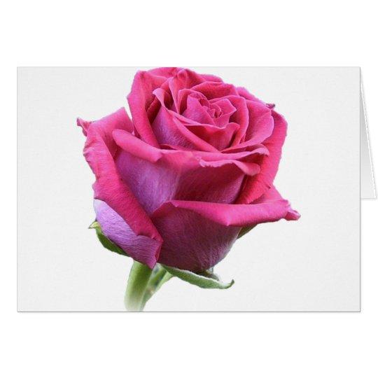 Rose Bud Card Pink