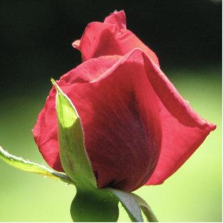 Rose Bud Statuette