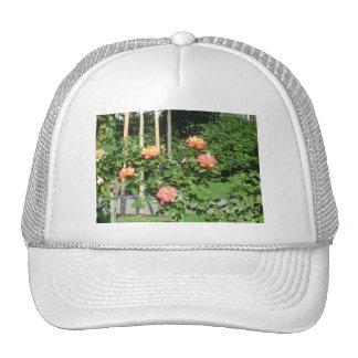 Rose bush trucker hat