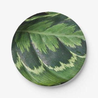 Rose Calathea Paper Plates