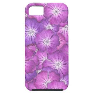 Rose Campion Everywhere iPhone SE/5/5s Case