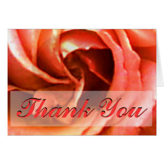 Rose Canterbury Thank You The MUSEUM Zazzle Gifts Card