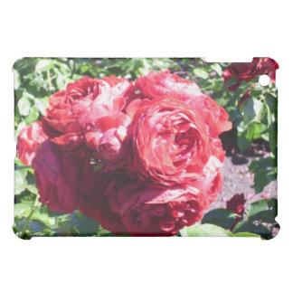 rose case for the iPad mini