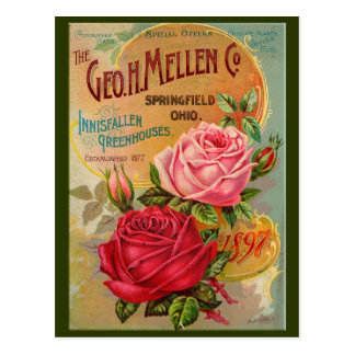 Rose Catalog Postcard