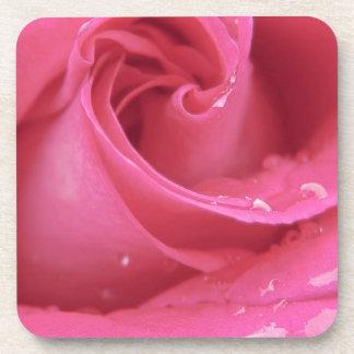 Rose Close Up Beverage Coaster