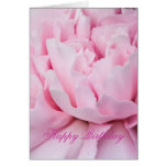 Rose closeup birthday card