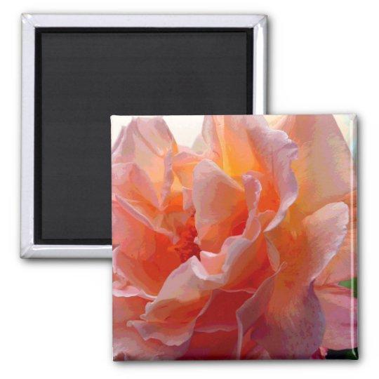 Rose Color Expression Square Magnet