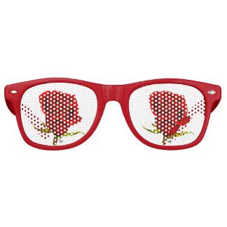 Rose Colored Glasses Retro Sunglasses