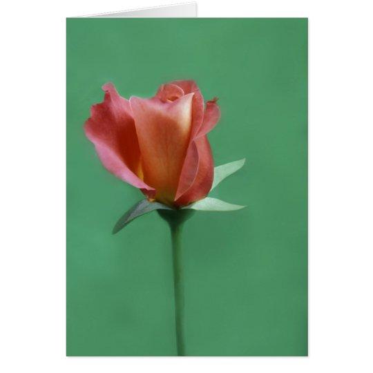 Rose-colored Rose Card