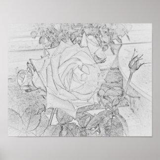 "Rose Coloring Poster 11""x14"""