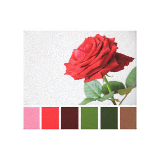 Rose Colour Chart Canvas