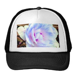Rose CricketDiane Art, Design & Photography Hat