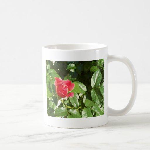 Rose Cup Coffee Mugs