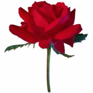 Rose Cutout
