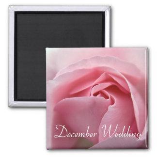 Rose :: December Wedding Magnet