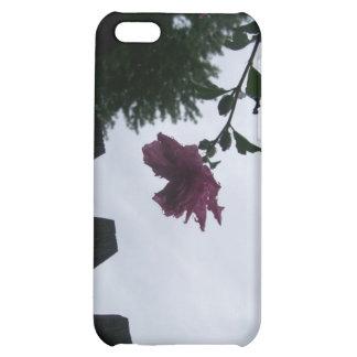 Rose dew fence gloomy iPhone 5C cases