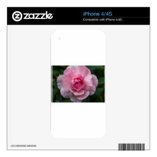 Rose drops iPhone 4 decal