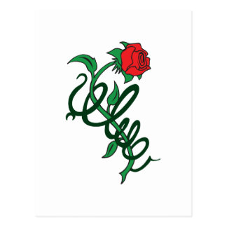 ROSE ENTWINED POSTCARD