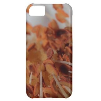 Rose Filament Makro iPhone 5C Cover