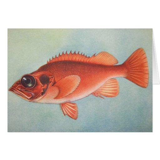 Rose Fish Greeting Cards