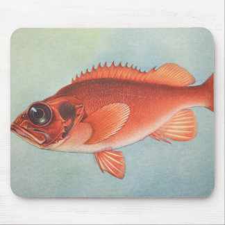 Rose Fish Mouse Pad