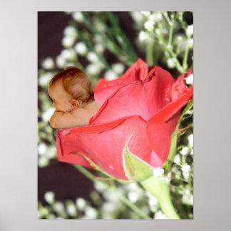 Rose Flower Baby Canvas Print