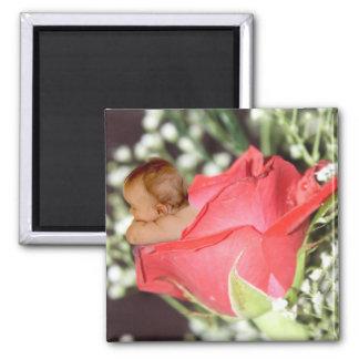 Rose Flower Baby magnet