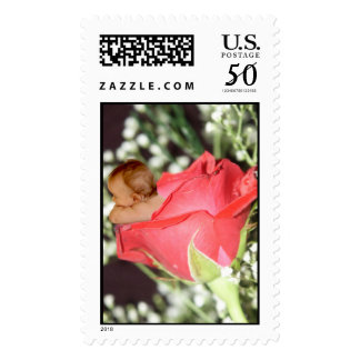 Rose Flower Baby Postage Stamps