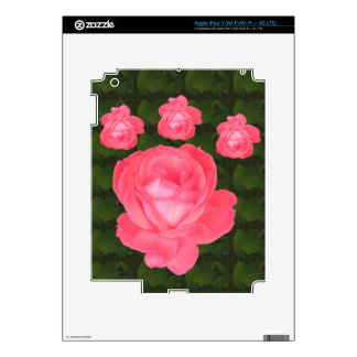 Rose Flower Bunch  TEMPLATE DIY add TEXT GREETING iPad 3 Skins
