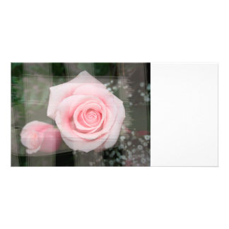 rose flower painted strokes pink roses personalized photo card