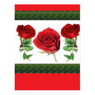 ROSE FLOWER POSTCARD