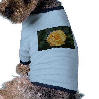 rose flowers flower  love wife sweetheart couple dog tee shirt