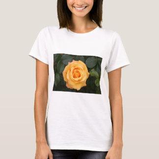 rose flowers flower  love wife sweetheart couple T-Shirt