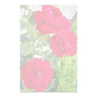 rose flowers stationery