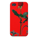 ROSE FOR A DOMME iPhone 4/4S CASE