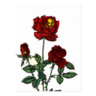 Rose for Life Post Card