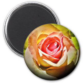 Rose - for you 2 inch round magnet