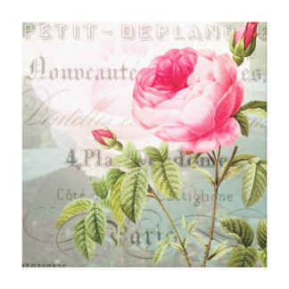 Rose French Accent Shabby Premium Wrapped Canvas Canvas Print
