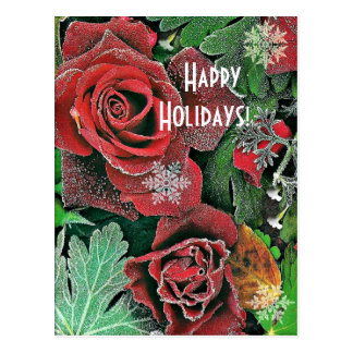 Rose Frost     Happy Holidays Postcard