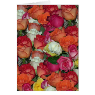 rose galore card