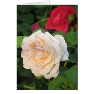 Rose Garden Card