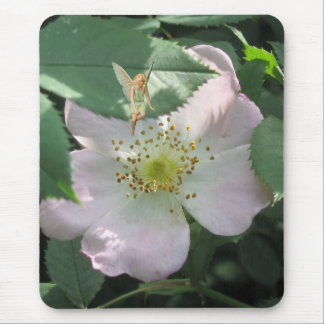 Rose Garden Fairy Mouse Pad