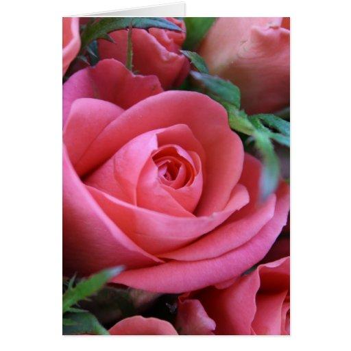 Rose Greeting Cards