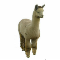 Rose Grey Alpaca Cutout