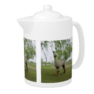 Rose Grey Alpaca Teapot