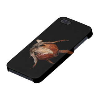Rose Hip Case For iPhone SE/5/5s