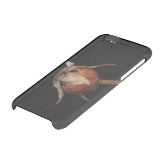 Rose Hip Clear iPhone 6/6S Case