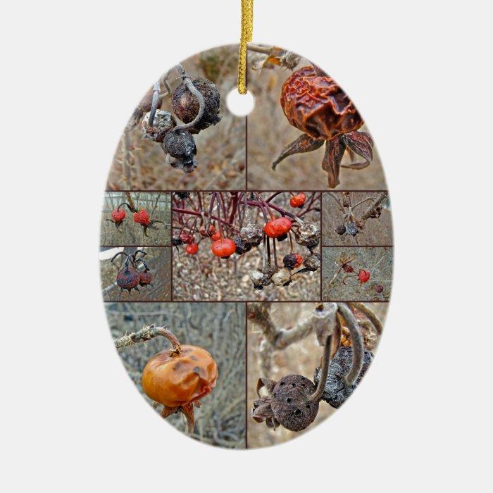 Rose Hip Collage Ceramic Ornament