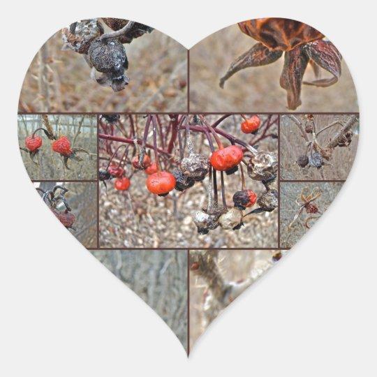 Rose Hip Collage Heart Sticker