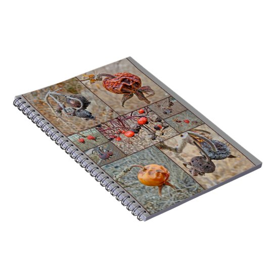 Rose Hip Collage Notebook
